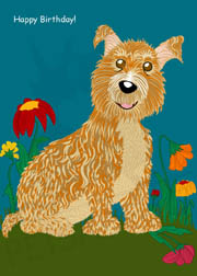 A cute hairy dog sits in flower field, boxed greeting cards. 20 blank cards | 20 envelopes. Front card copy reads: Happy Birthday! Item#:HBD-GC043