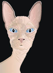 Tabitha, a Sphynx cat wall art. Item#: CSBT-P203